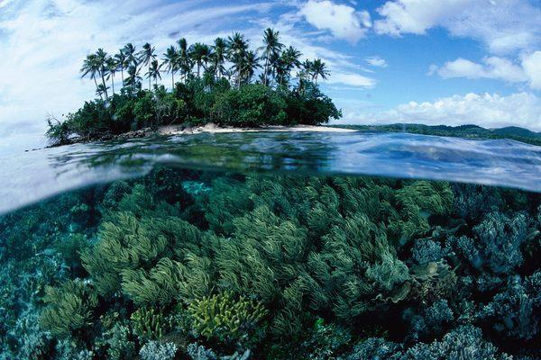 Papua_Nuova_Guinea.jpg